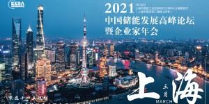 2021中国储能发展高峰论坛暨企业家年会