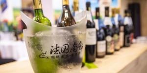 2021中国特许加盟展北京站